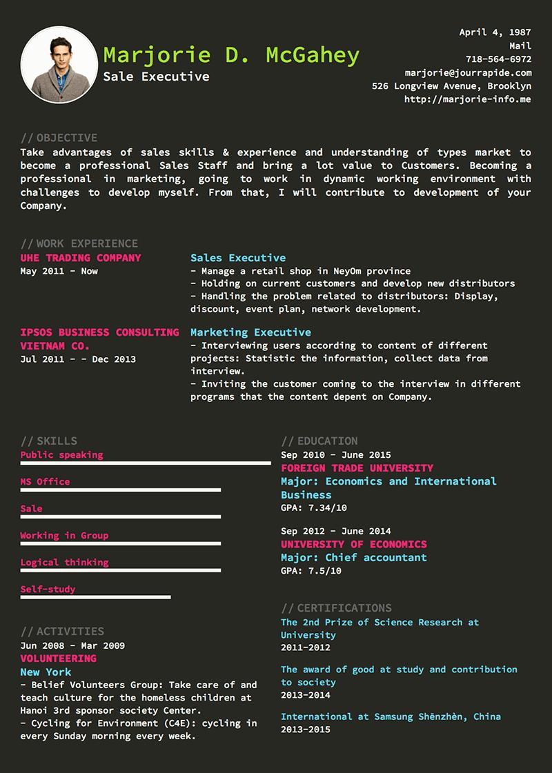 template-cv-Developer