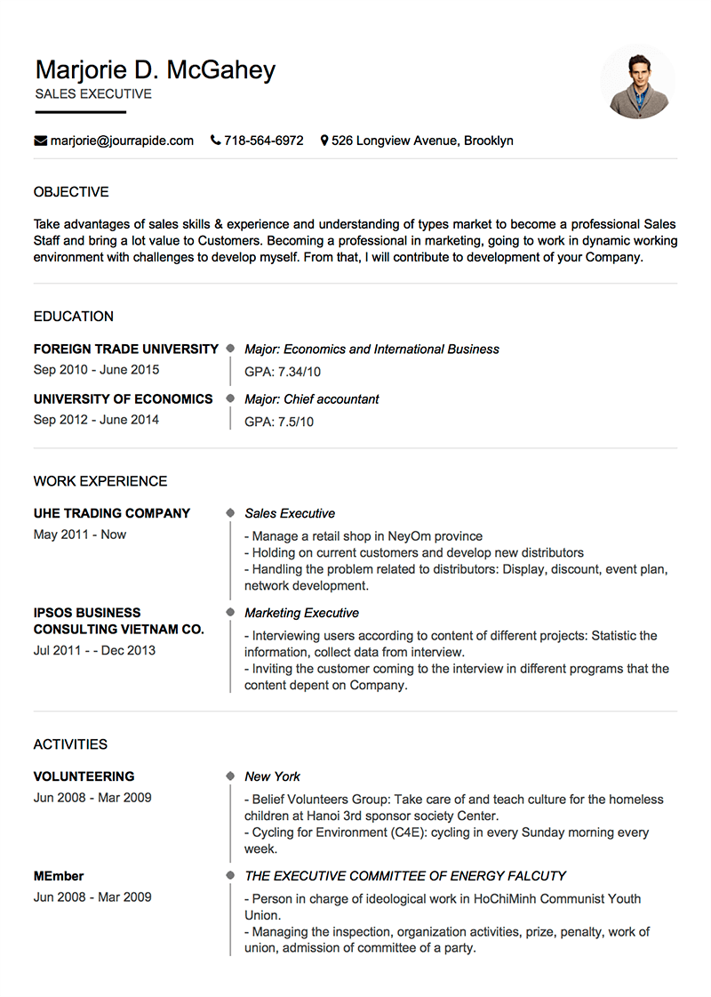 Professional Resume CV Templates With Examples