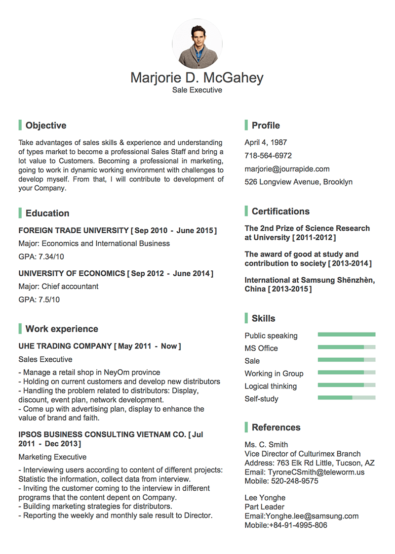 create a professional resume cv in minutes out photoshop ai sample cv vp s marketing
